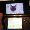 Editorial: Questions About The 3DS Terms of Service